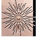 logo hair extension ibiza